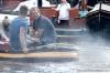 havendagenenshantifestival-2013-048