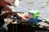 havendagenenshantifestival-2013-053