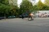 stuntmovieprod-woerdenjuli2013-28