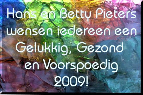 nieuwjaar2009