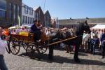 Graskaasdag-2015-06-06-9138 © HansPieters.nl