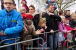 Intocht Sinterklaas 20151114-6685