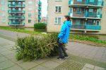 Kerstbomen Molenvliet-0113-02