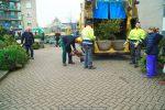 Kerstbomen Molenvliet-0113-09