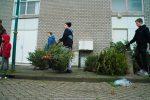 Kerstbomen Molenvliet-0113-20