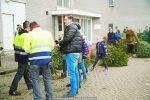 Kerstbomen Molenvliet-0113-31