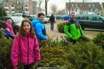 Kerstbomen Molenvliet-0113-37