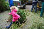 Kerstbomen Molenvliet-0113-39