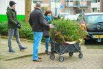 Kerstbomen Molenvliet-0113-40