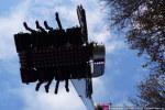 Koeiemart-22102014-2599 © HansPieters.nl