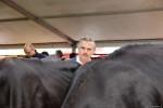 KoeienmarktWoerden20131023-02136