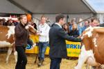 KoeienmarktWoerden20131023-02182