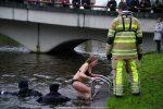 NieuwsjaarsduikParijse brug 180101-013