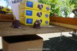 Roemeniemarkt-29-8-2015-8411