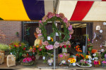 Roemeniemarkt-29-8-2015-8476