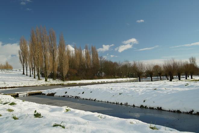 Winter in Molenvliet