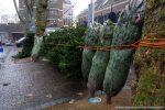 Winterfair Woerden-161211-5818