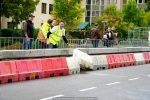 Woerden City Karting 170930-02